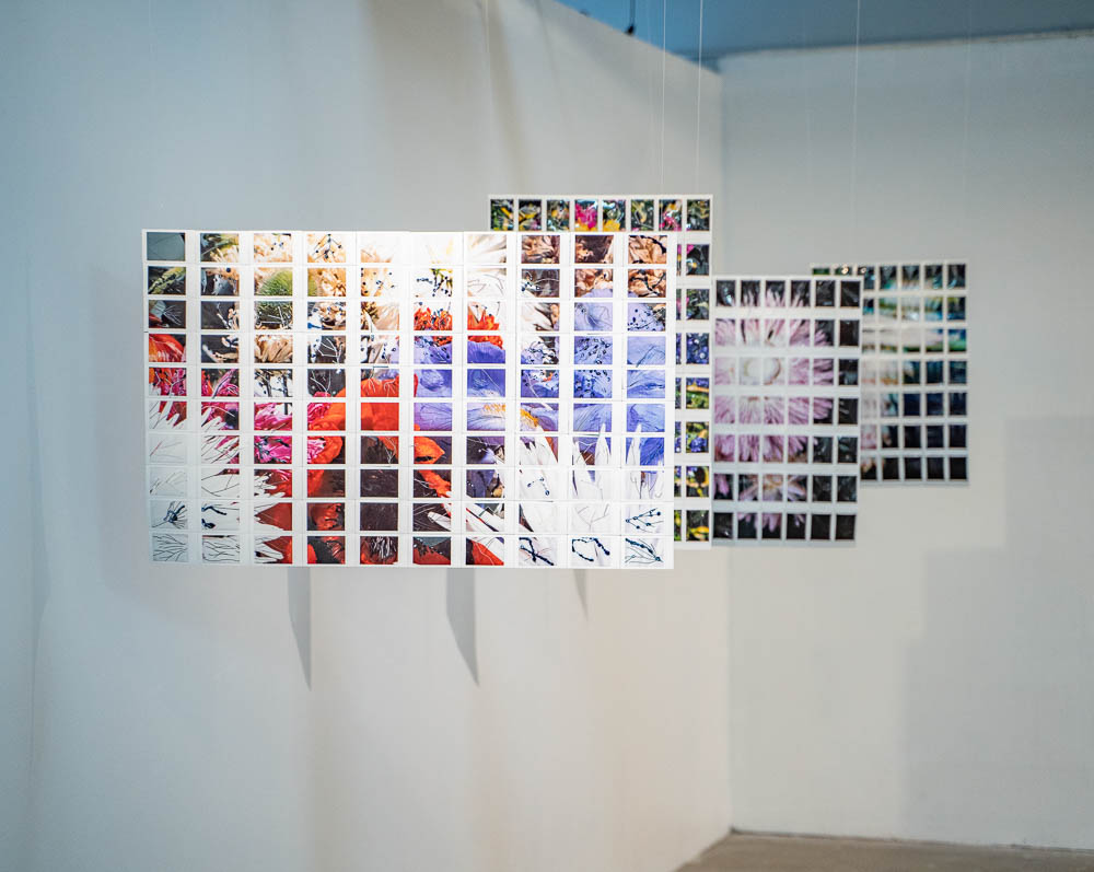 12_Hoth_Immortal_Chromatic_Installation_View