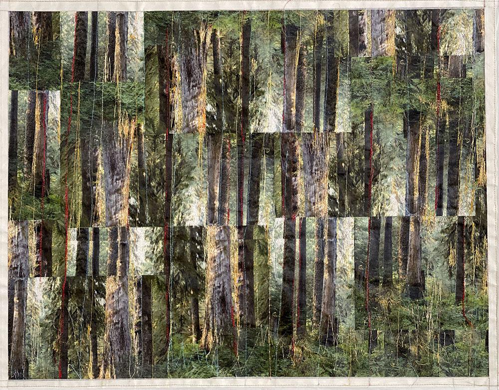 SchmidMaybach_Rainforest