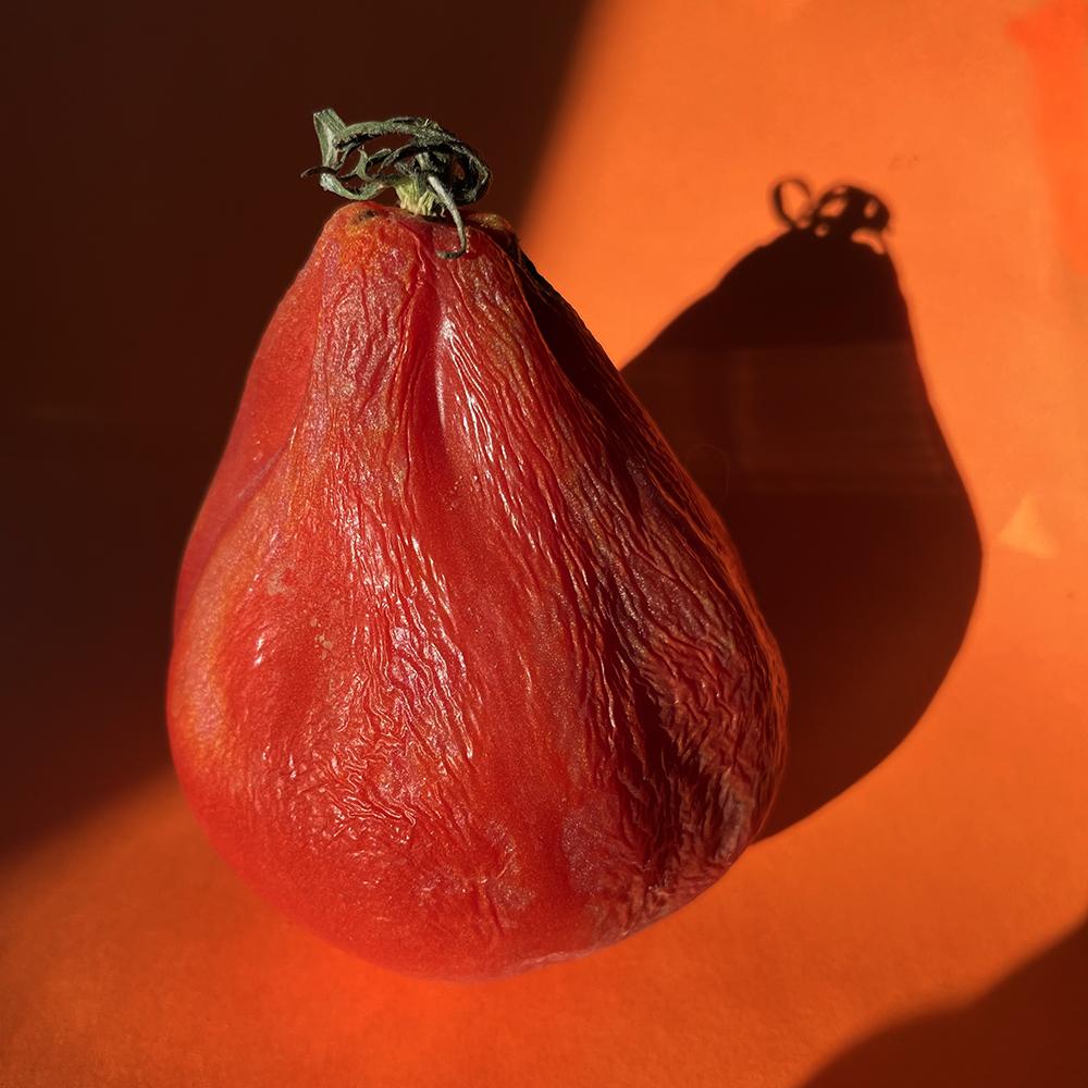 ©Joy Bush, Tortured Tomato