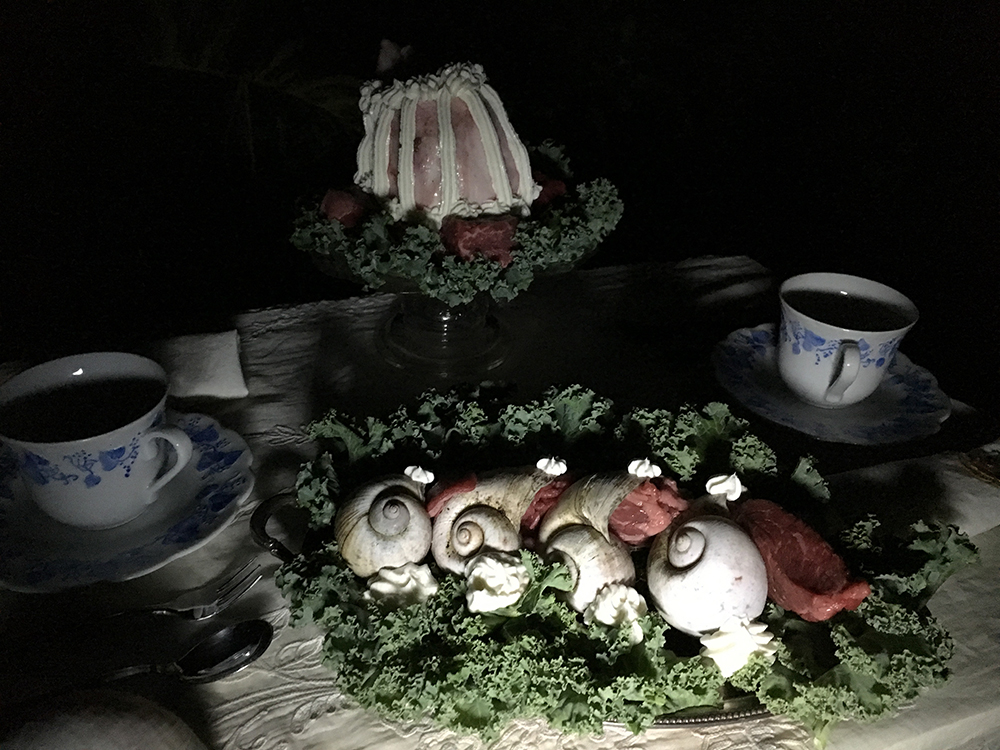 8_snailset
