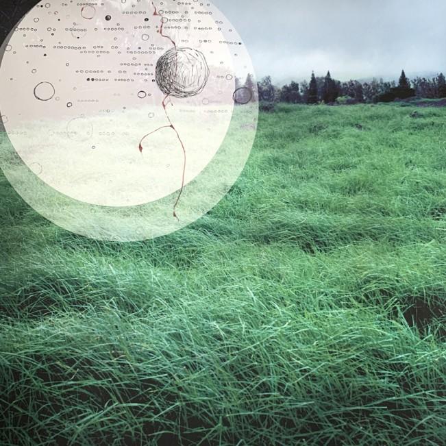 Conversations with Nature: Tara Cronin: Winds