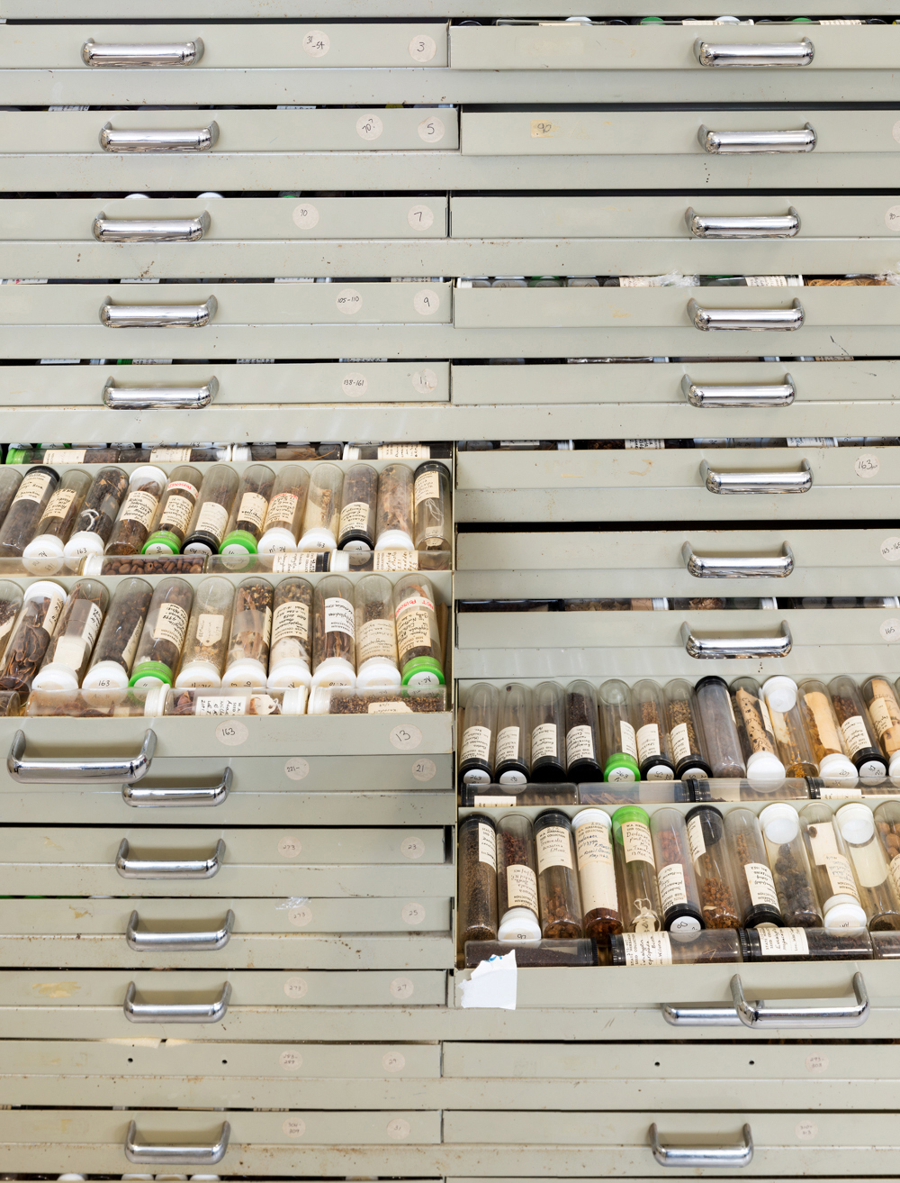 Antique Seed Collection, Threatened Flora Seed Centre, Western A