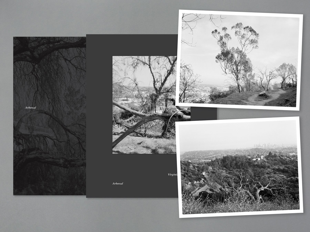 Arboreal Special Edition digital with prints