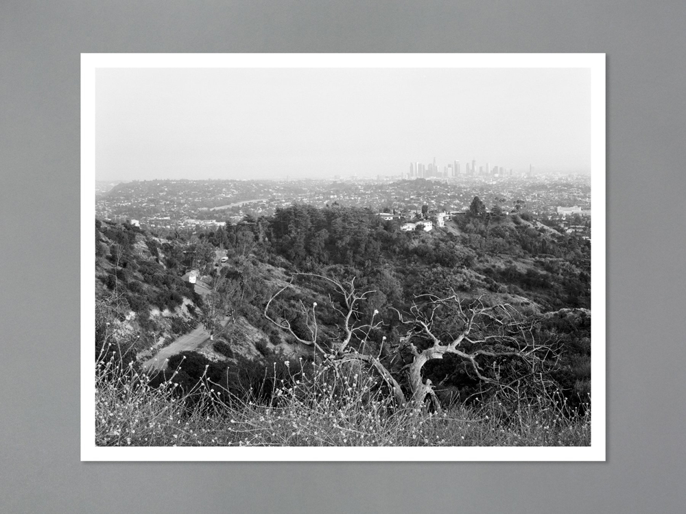 Arboreal Special edition print 2