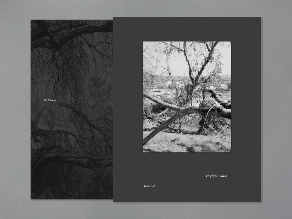 Arboreal Special edition splicase