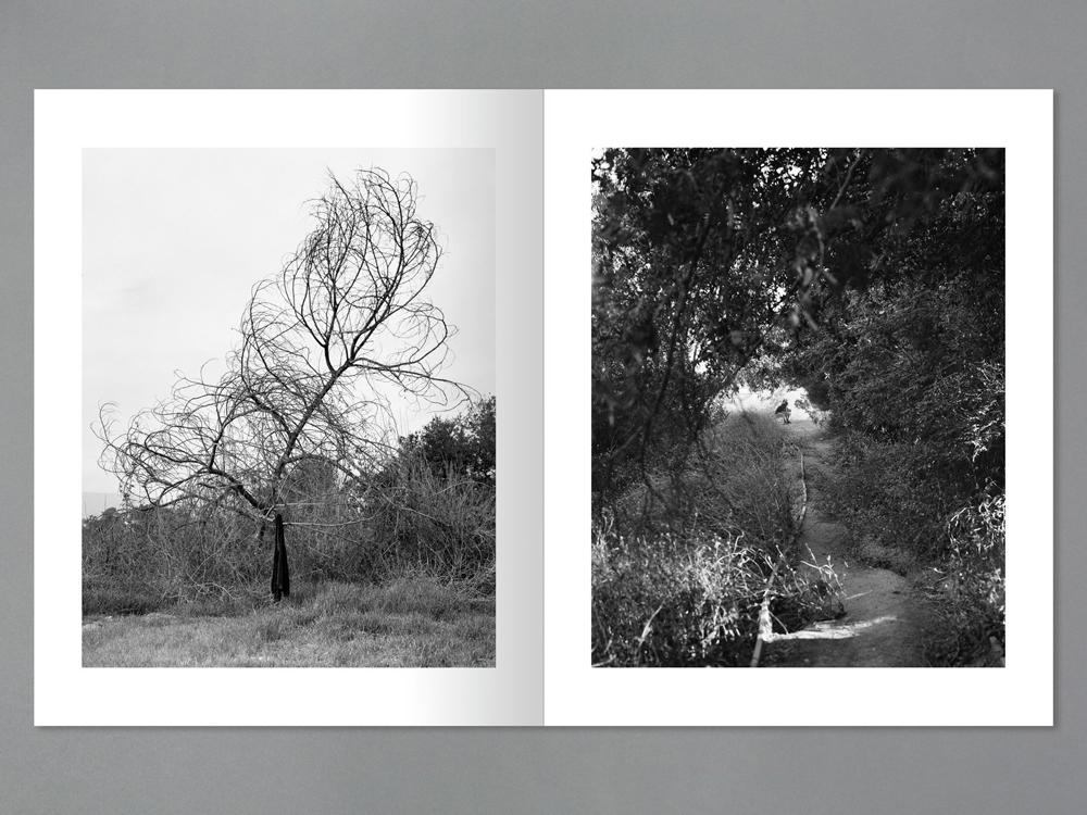 Arboreal book spread 2