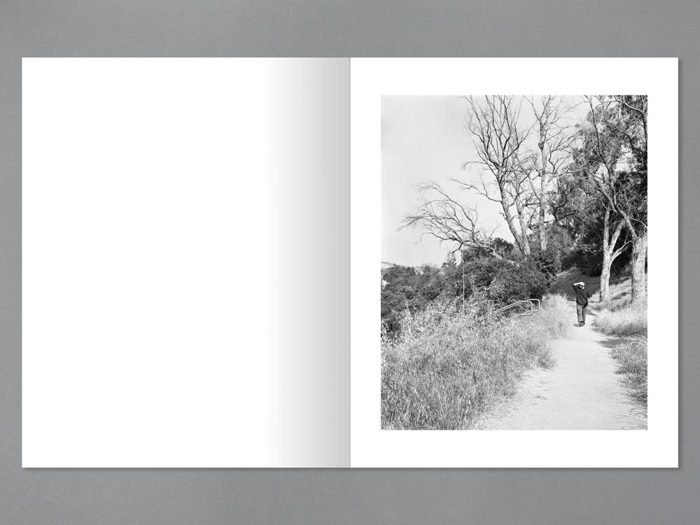 Arboreal book spread 3