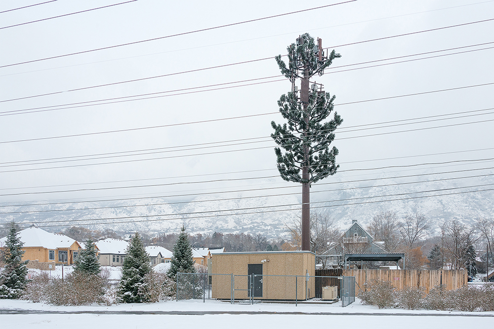 Fauxliage - Snowfall, Provo, UT