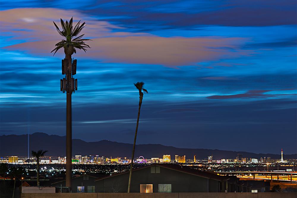 Fauxliage - Vegas Strip, Henderson, NV