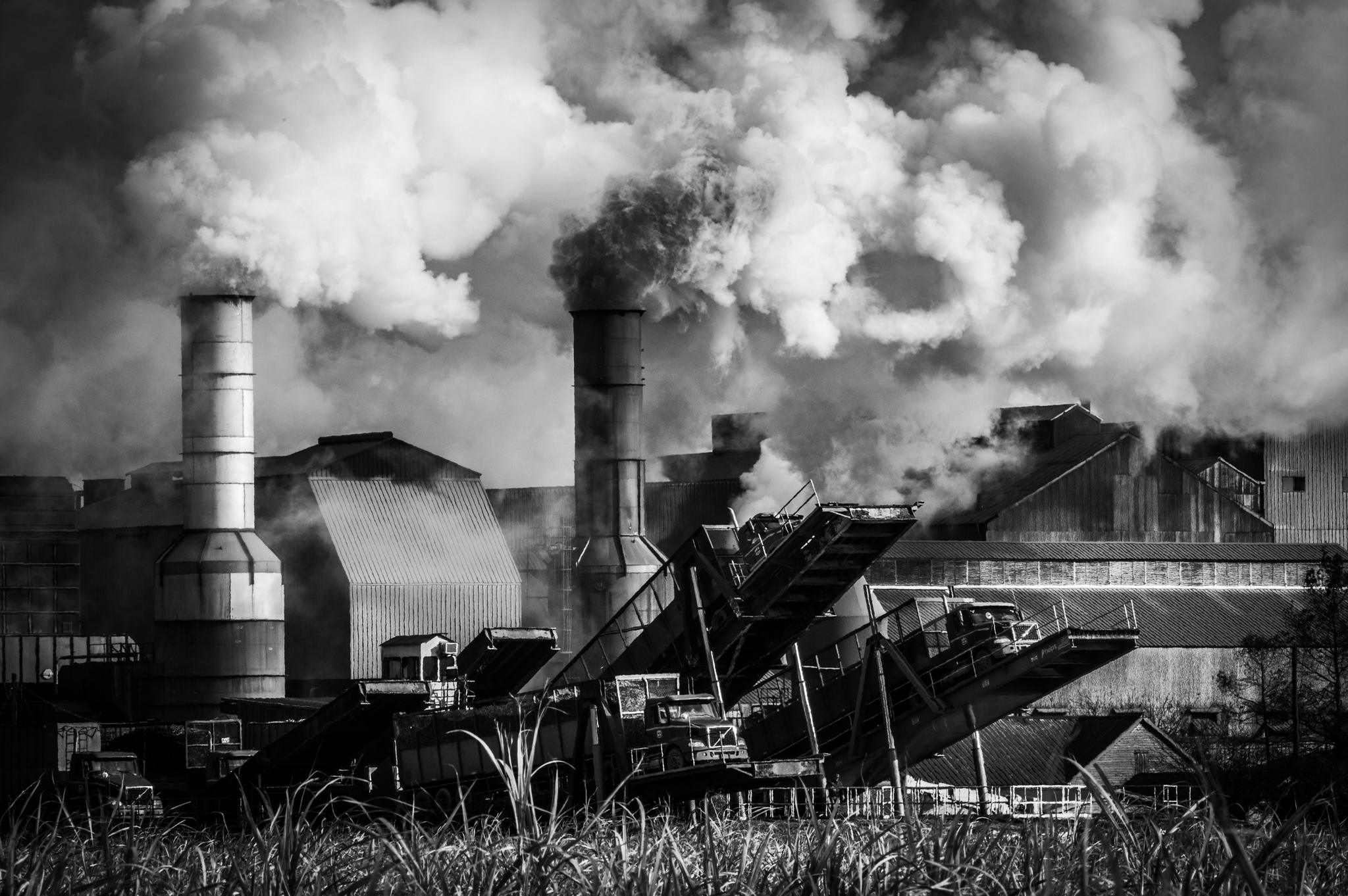 Sugarcane mill. Patoutville, Louisiana. December 2020.
