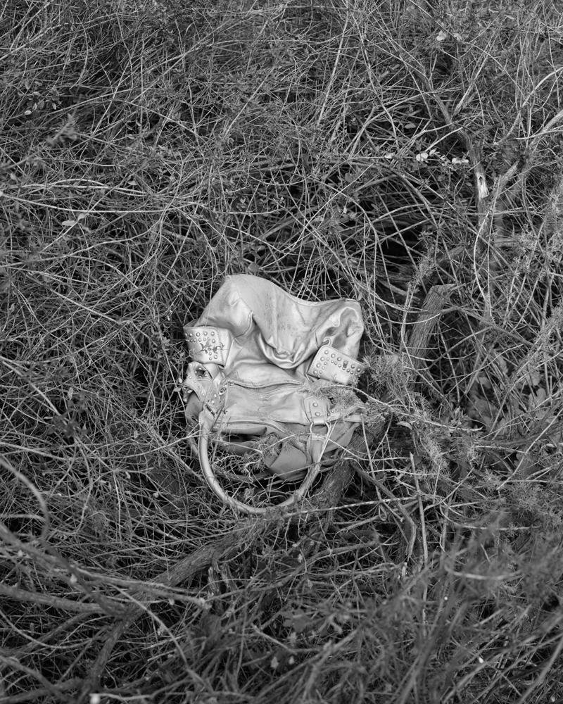 virginia-wilcox-arboreal-08