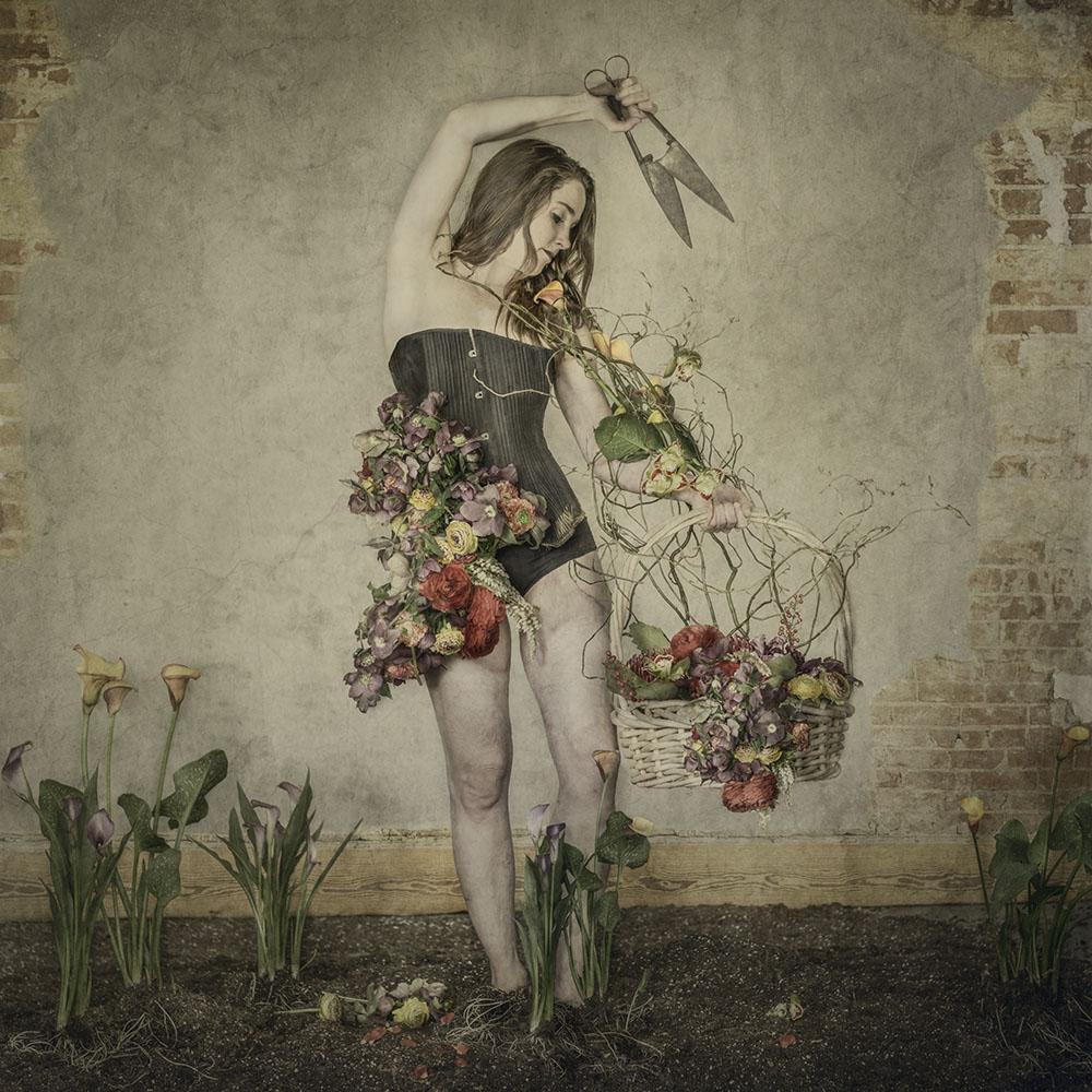 Jackson_A_Thousand_Blooms