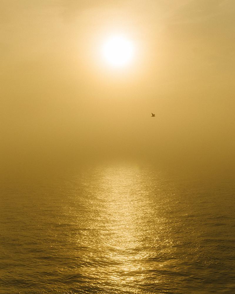 05_Far Apart by James Prochnik_Foggy Sunset_Y2A8055