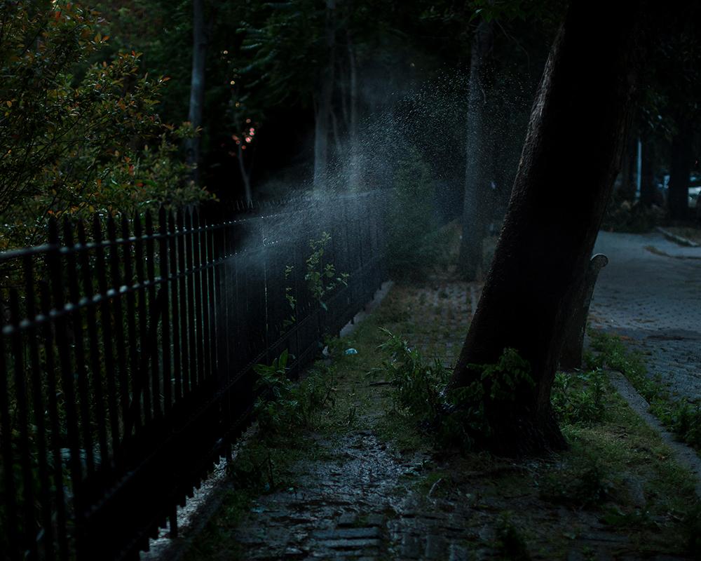 10_Far Apart by James Prochnik_The Night Sprinkler_Y2A1926