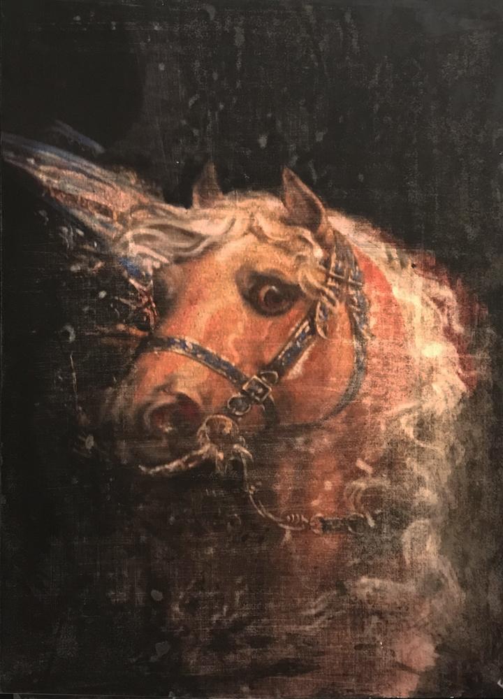 War Horse 2_Putin