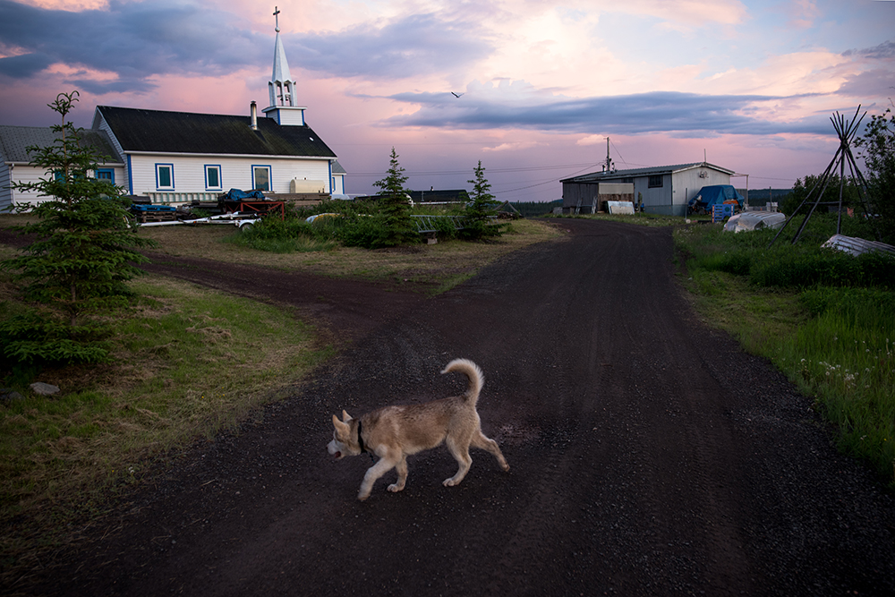 A dog walks near the Catholic Church of the Holy Family in Łutsël K'é, Northwest Territories. The church was built near the present day settlement in 19XX and moved to its current location at the tip of the penninsula - one of the tallest and most recognizable structures in the community.
