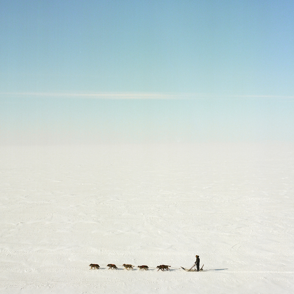 A dog team on the frozen Kotzebue Sound, photographed from the observation deck of the Nulla?vik Hotel in Kotzebue, Alaska. 2016.