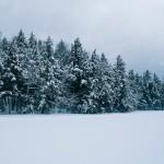 01_SNOWY_LAKE∏AmaniWillett